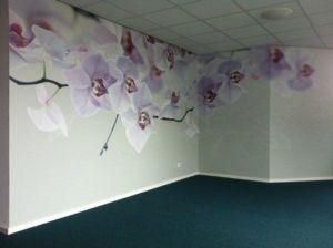 wandvinyl orchidee